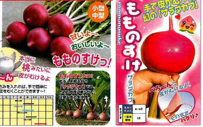 momonosuke01111
