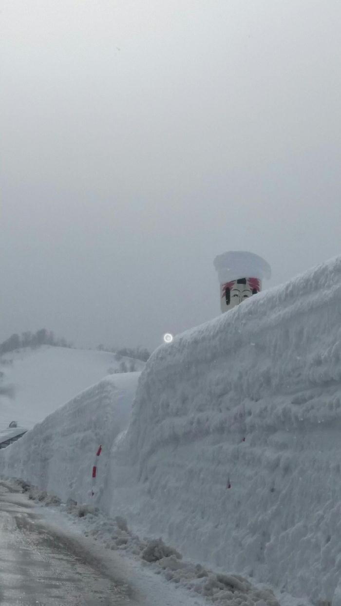 279から445へ★これが日本一の雪の郷だゼイ〇△□・・・の巻