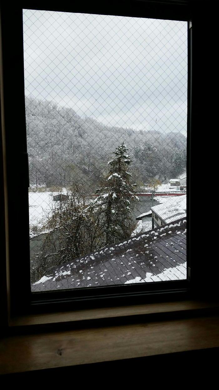 初雪カモン★クリスマスモードへ◎ゴーゴーゴー♪・・の巻