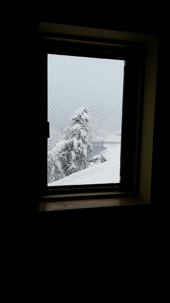 山眠るときへ★しんしん真っ白な雪がやってきた♪・・・の巻